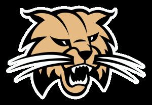 Buchholz Bobcats